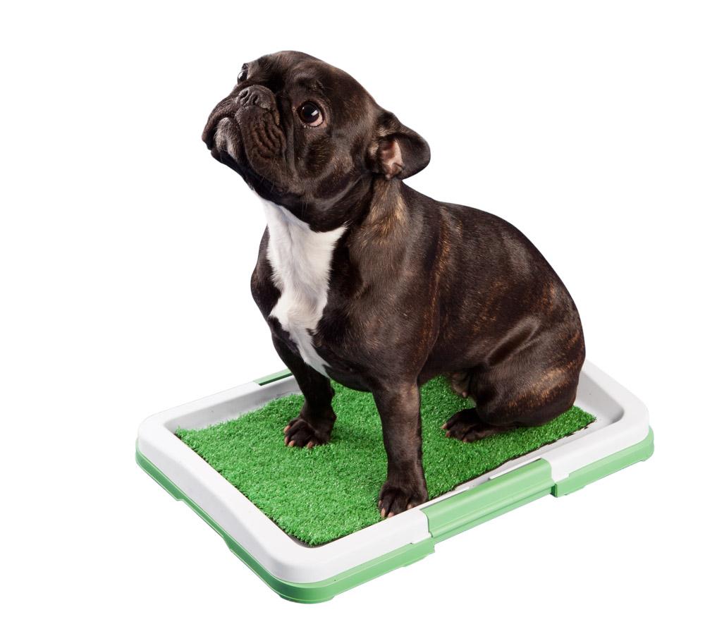 ProPet Toaleta pro psy malá